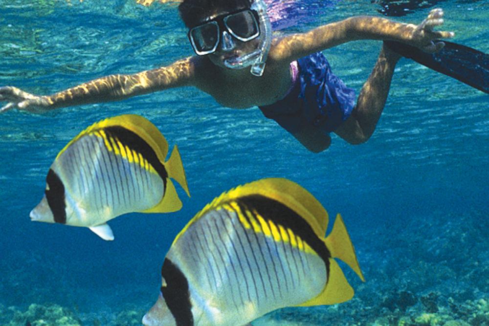 har-FairWind-Boy-Snorkeling